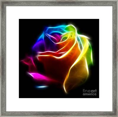 Beautiful Rose Of Colors No2 Framed Print by Pamela Johnson