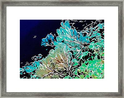 Beautiful Sea Fan Coral 1 Framed Print by Lanjee Chee