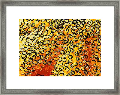 Beautiful Soft Coral 4 Framed Print by Lanjee Chee