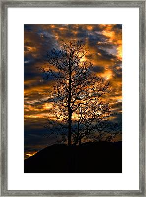 Beautiful Sunset Tree Silhouette Framed Print by Dan Sproul
