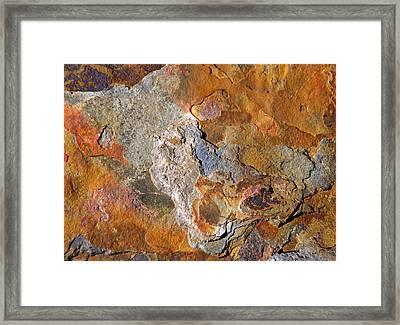 Beautiful Surface Framed Print by Lynda Lehmann