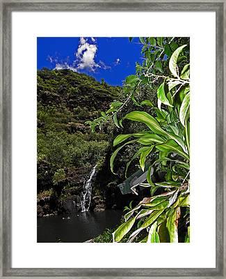 Beautiful Waimea Falls II Framed Print by Elizabeth Hoskinson