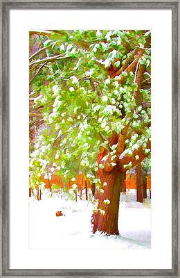 Beautiful Winter Tree Framed Print by Lanjee Chee