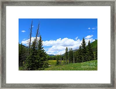 Beauty Of Colorado  Framed Print by Christiane Schulze Art And Photography