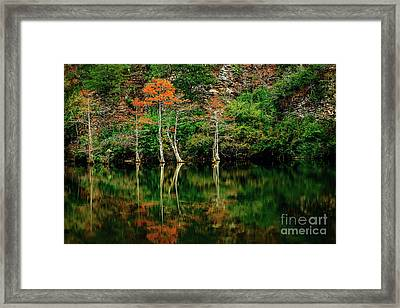 Beaver's Bend Color Explosion Framed Print by Tamyra Ayles