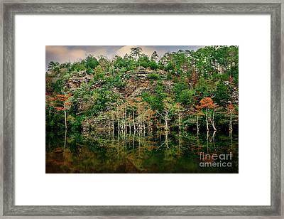 Beaver's Bend Overlook Framed Print by Tamyra Ayles