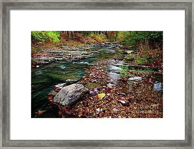 Beaver's Bend Tiny Stream Framed Print by Tamyra Ayles