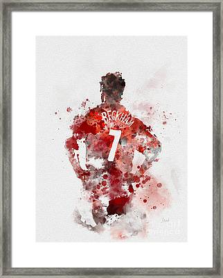 Becks Framed Print by Rebecca Jenkins