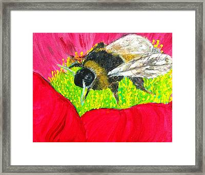 Bee Seen Framed Print by Rob Spencer