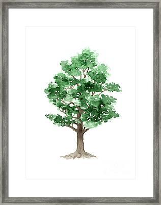 Beech Tree Minimalist Watercolor Painting Framed Print by Joanna Szmerdt