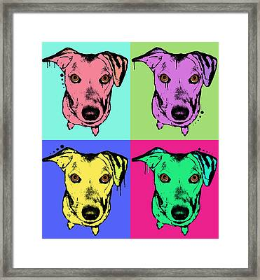 Beg Face Framed Print by Dean Russo