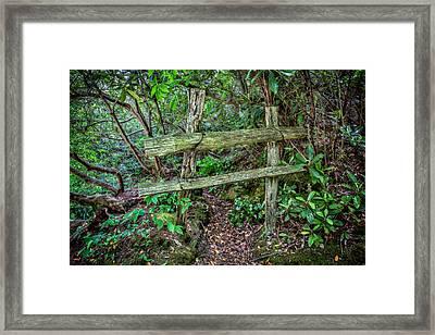 Behind The Green Fence Framed Print by John Haldane