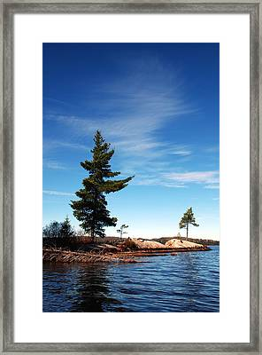 Being Together Framed Print by David Hickey