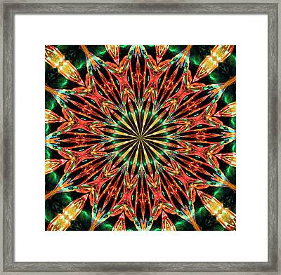 Bejewelled Framed Print by Kristin Elmquist