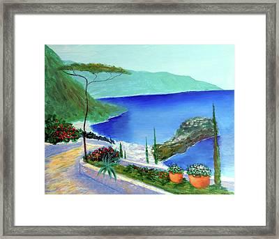 Bella Monaco  Framed Print by Larry Cirigliano