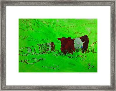 Belted Galloway Cows On Dartmoor Framed Print by Mike Jory