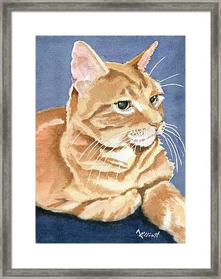 Benny Framed Print by Marsha Elliott