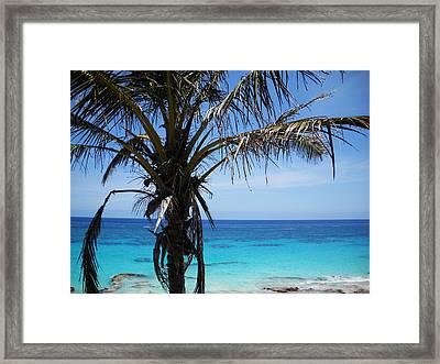 Bermuda Blues Framed Print by Julia Raddatz