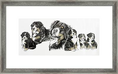Bernese Mountain Dog Framed Print by Barbara Keith