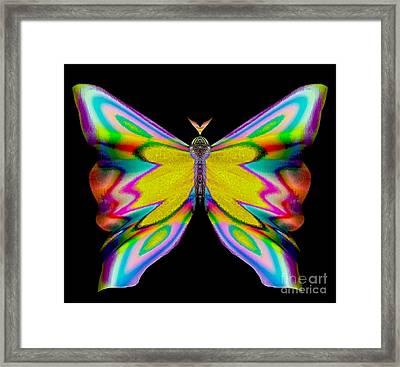 Berry Flirtybriar Framed Print by Raymel Garcia