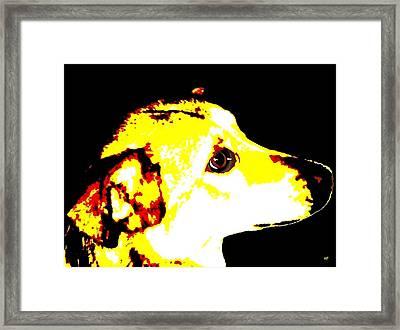 Best Friend Framed Print by Will Borden