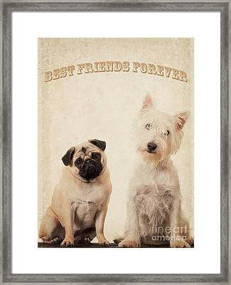 Best Friends Forever Framed Print by Edward Fielding