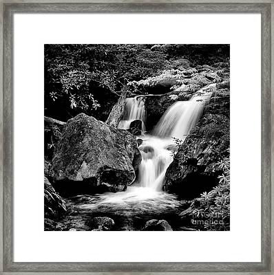 Best Of The Smokies Framed Print by Paul W Faust -  Impressions of Light