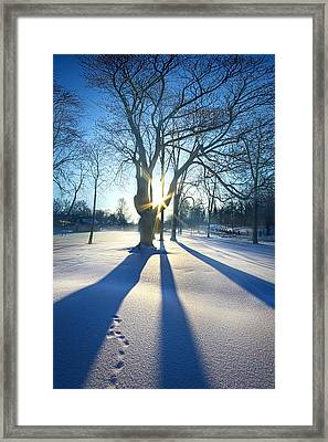 Bet On The Blues Framed Print by Phil Koch
