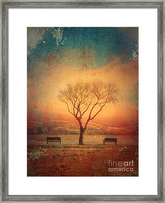 Between Two Benches Framed Print by Tara Turner