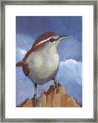 Bewicks Wren In Acrylic Framed Print by Joyce Geleynse