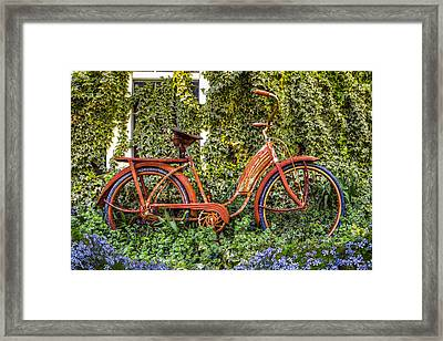 Bicycle In The Garden Framed Print by Debra and Dave Vanderlaan