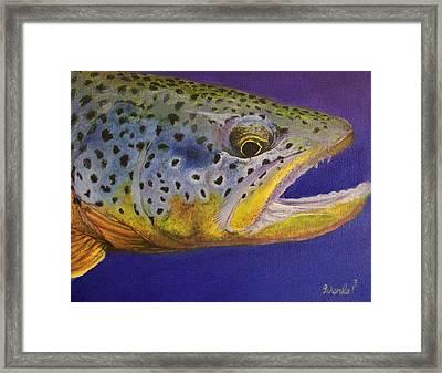 Big Brown Framed Print by Bill Werle
