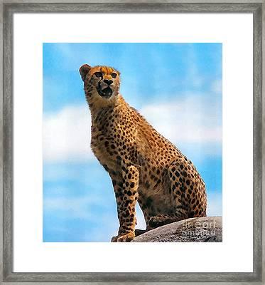 Big Cat Framed Print by Diane E Berry