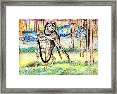 Big Dane Framed Print by Ion Danu