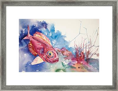 Big Eye Squirrelfish Framed Print by Tanya L Haynes - Printscapes