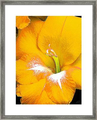 Big Glad In Yellow Framed Print by Bill Caldwell -        ABeautifulSky Photography