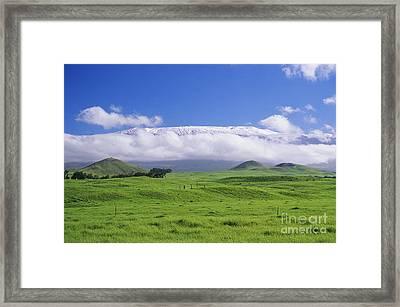 Big Island, Waimea Framed Print by Peter French - Printscapes