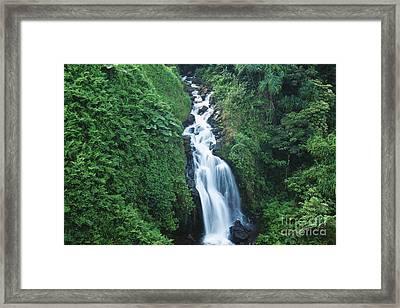 Big Island Watefall Framed Print by William Waterfall - Printscapes