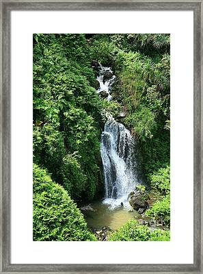 Big Island Waterfall Framed Print by Peter French - Printscapes