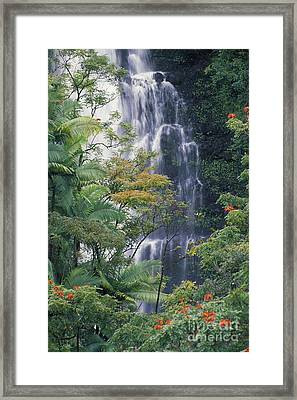 Big Island Waterfall Framed Print by Ron Dahlquist - Printscapes
