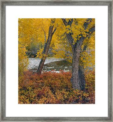 Big Lost Autumn Framed Print by Leland D Howard