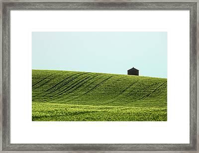 Big Sag Wheat Framed Print by Todd Klassy