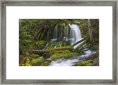 Big Spring Creek Falls - Upper Framed Print by Loree Johnson