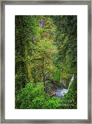 Bigfoot Country Framed Print by Jon Burch Photography