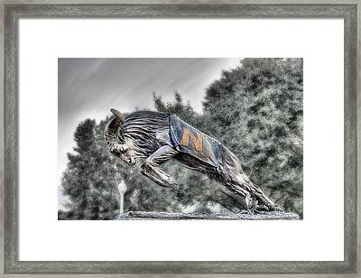 Bill The Goat Bw Framed Print by JC Findley