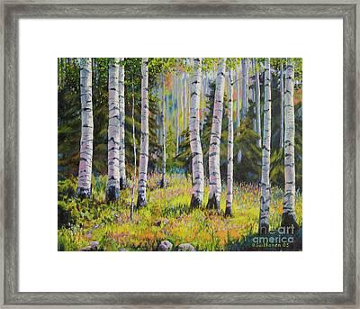 Birch Grove Framed Print by Veikko Suikkanen
