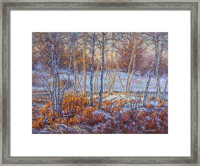Birches In First Snow Framed Print by Fiona Craig