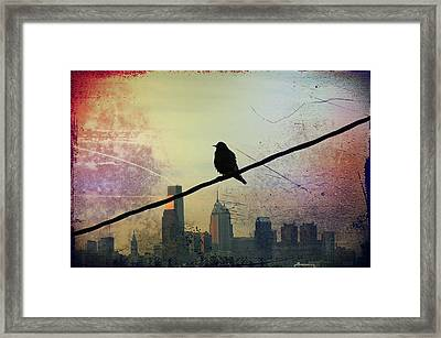 Bird On A Wire Framed Print by Bill Cannon