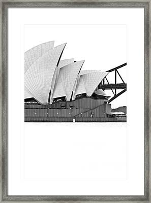 Bird On The Harbour Framed Print by Az Jackson