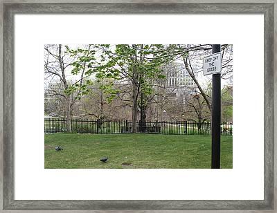 Birds Can't Read Framed Print by David S Reynolds